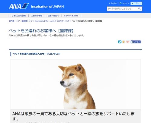 ana-dog2